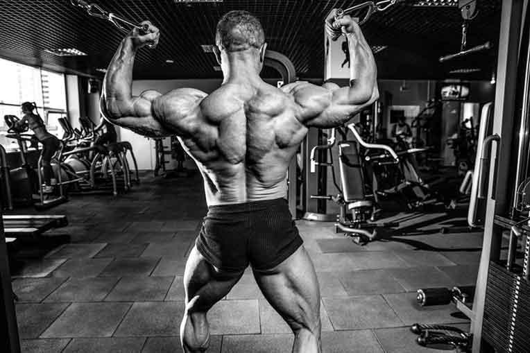 Training for Strength Gains