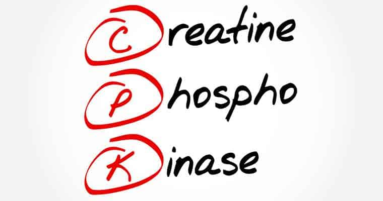 creatine phosphokinase