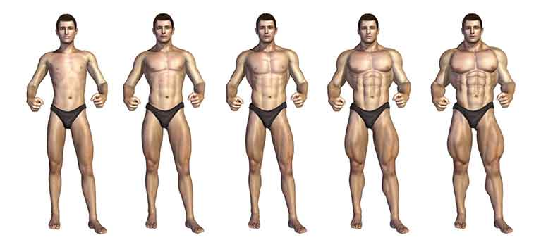 Training Specifically for Muscle Size - Training Volume