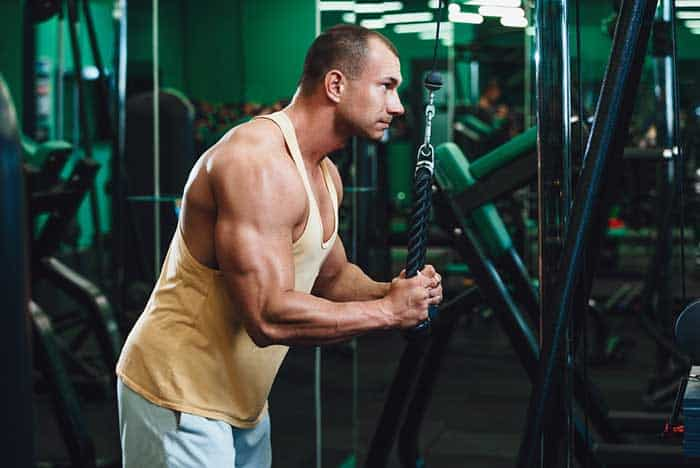 Increasing Muscle Mass triceps
