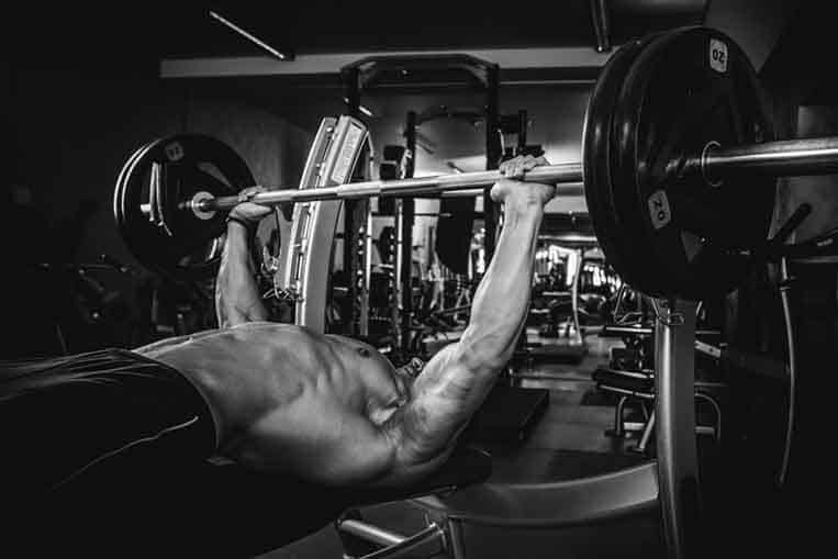 Bench press for muscle gains