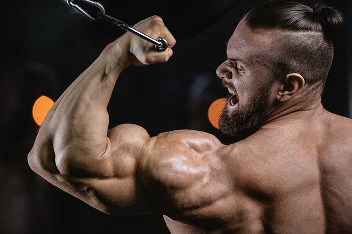 The Classic Bodybuilding Sets - Adding Exercises