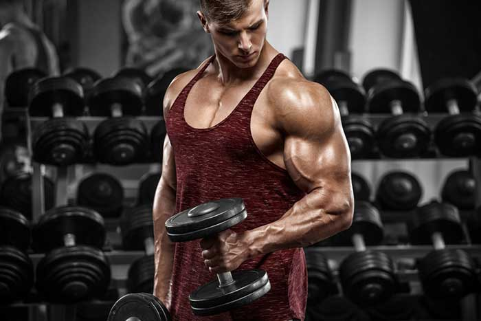 Muscle heavy weight biceps