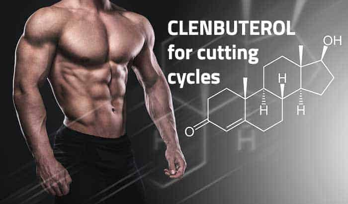 Clenbuterol is a powerful fat-burning supplement