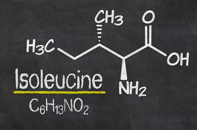 L-Isoleucine BCAA